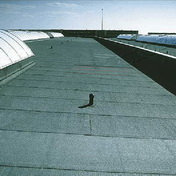 Soft roofing (Kiev)